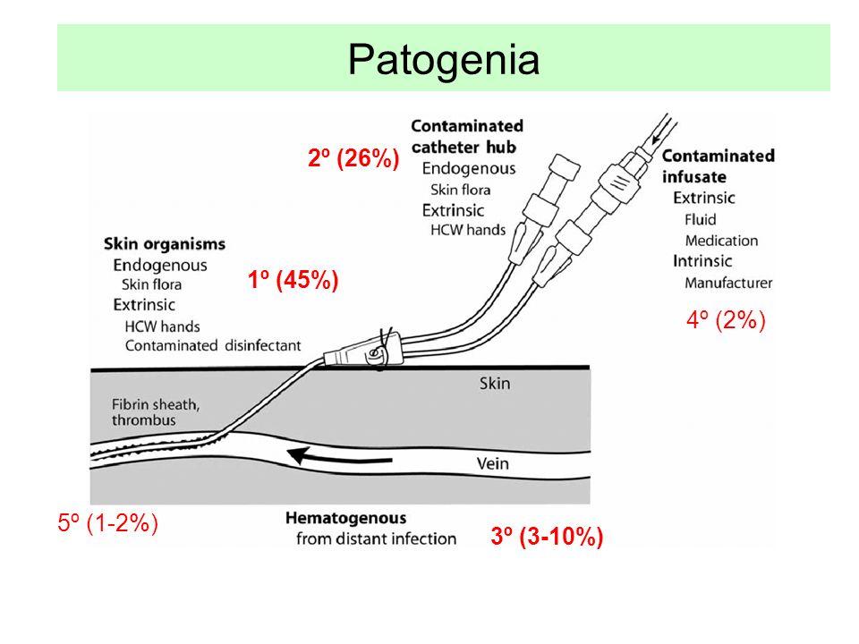 Patogenia 2º (26%) 1º (45%) 4º (2%) 5º (1-2%) 3º (3-10%)