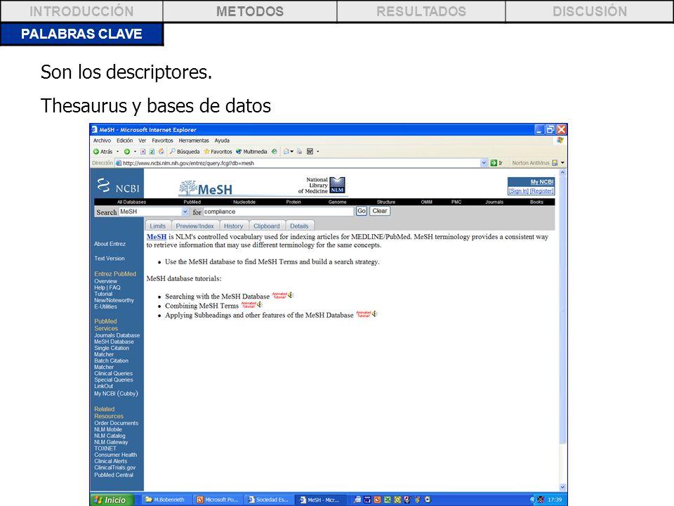 Thesaurus y bases de datos