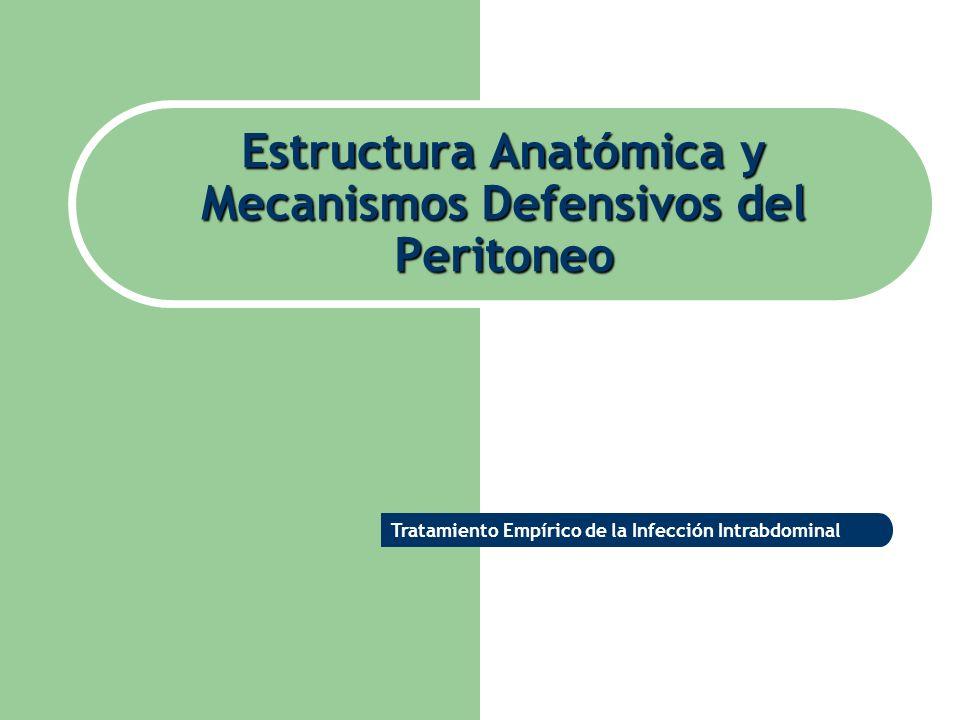 Estructura Anatómica y Mecanismos Defensivos del Peritoneo