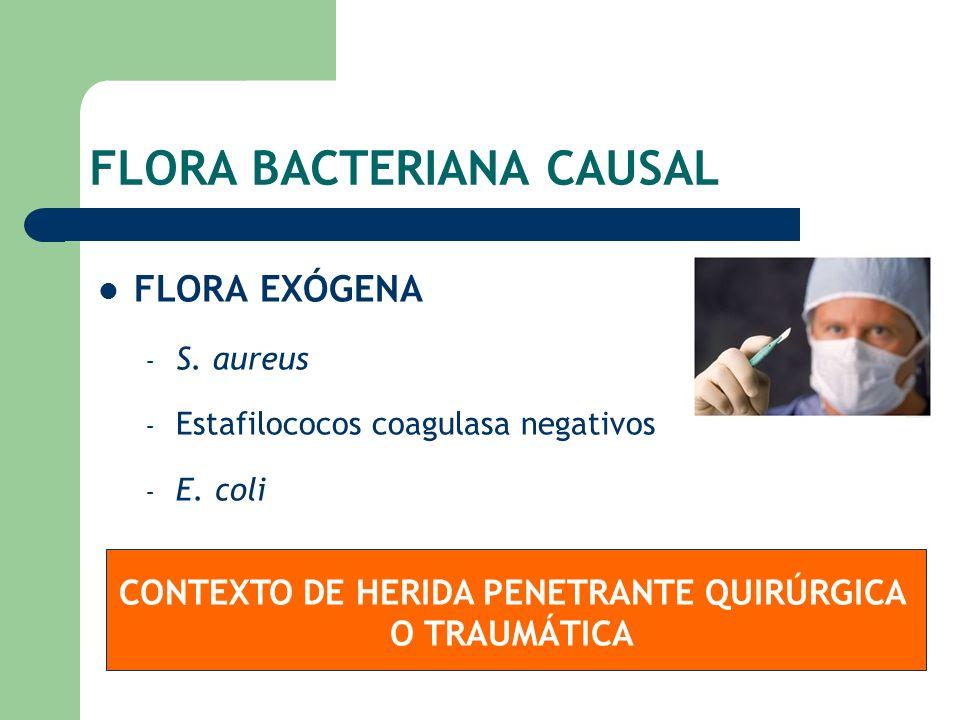 FLORA BACTERIANA CAUSAL