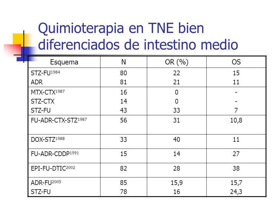 Quimioterapia en TNE bien diferenciados de intestino medio