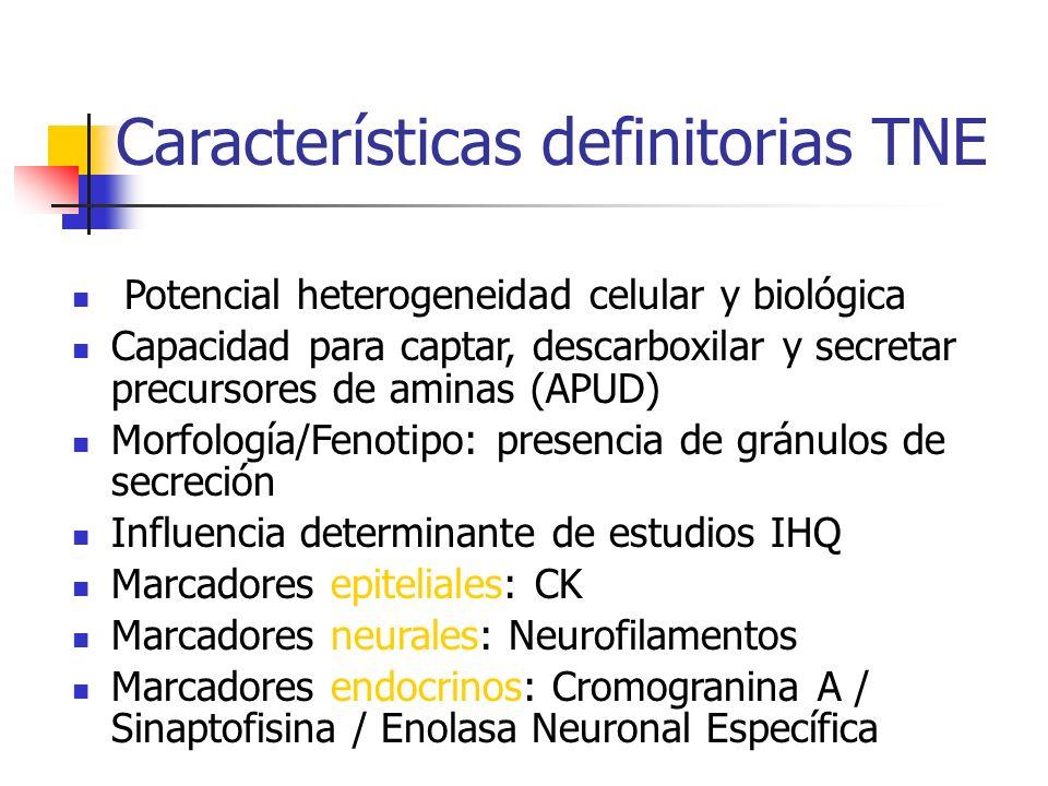 Características definitorias TNE