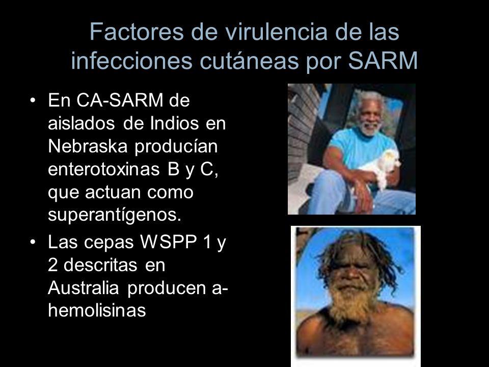 Factores de virulencia de las infecciones cutáneas por SARM