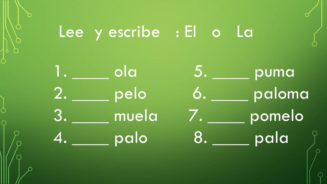 Lee y escribe : El o La 1. ____ ola 5. ____ puma. 2. ____ pelo 6. ____ paloma.