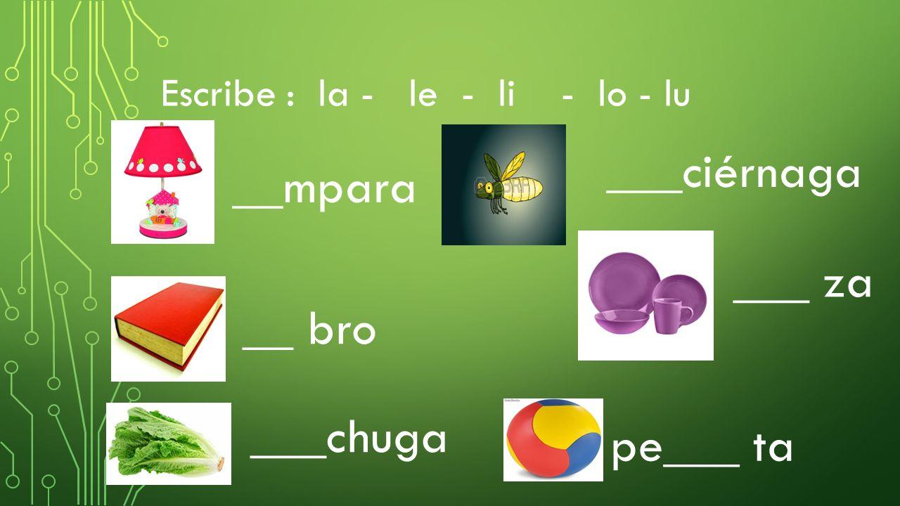 ___ciérnaga __mpara ___ za __ bro ___chuga pe___ ta