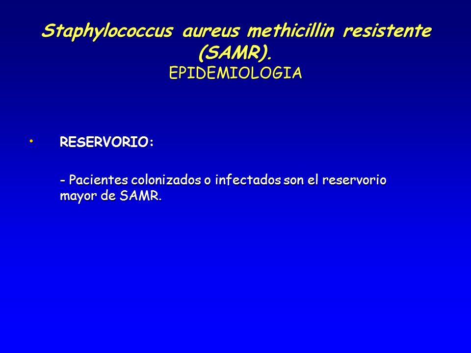 Staphylococcus aureus methicillin resistente (SAMR). EPIDEMIOLOGIA