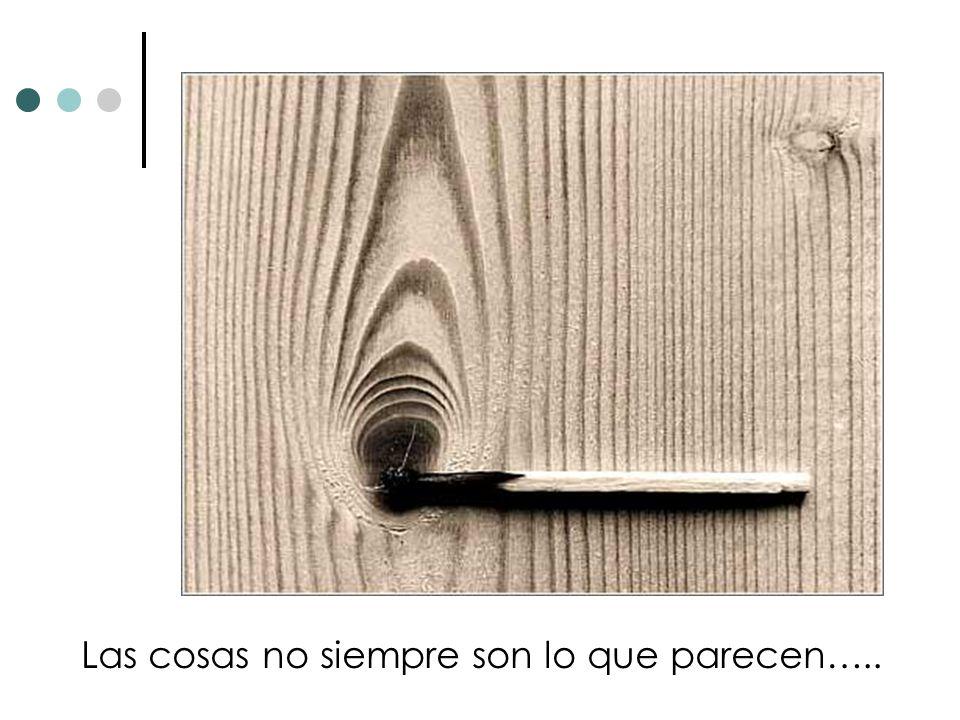 Las cosas no siempre son lo que parecen…..