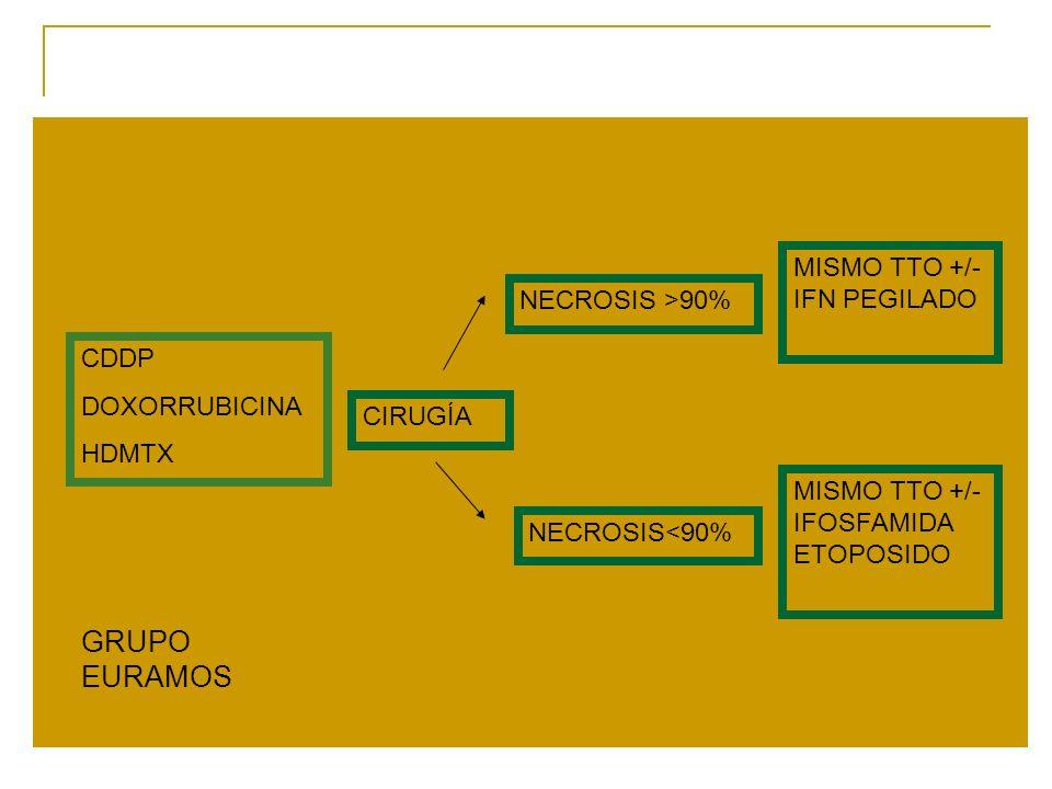 GRUPO EURAMOS MISMO TTO +/- IFN PEGILADO NECROSIS >90% CDDP