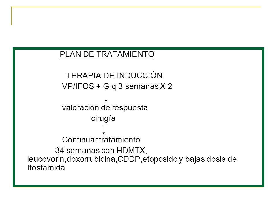 PLAN DE TRATAMIENTO TERAPIA DE INDUCCIÓN. VP/IFOS + G q 3 semanas X 2. valoración de respuesta. cirugía.