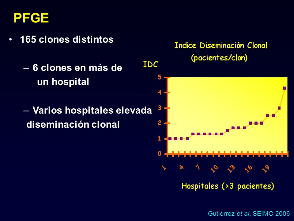 PFGE 165 clones distintos 6 clones en más de un hospital