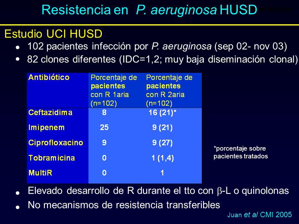 Resistencia en P. aeruginosa HUSD