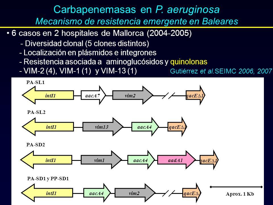 Carbapenemasas en P. aeruginosa
