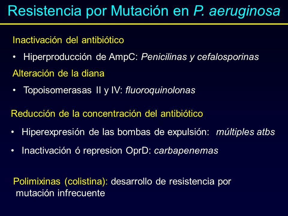Resistencia por Mutación en P. aeruginosa