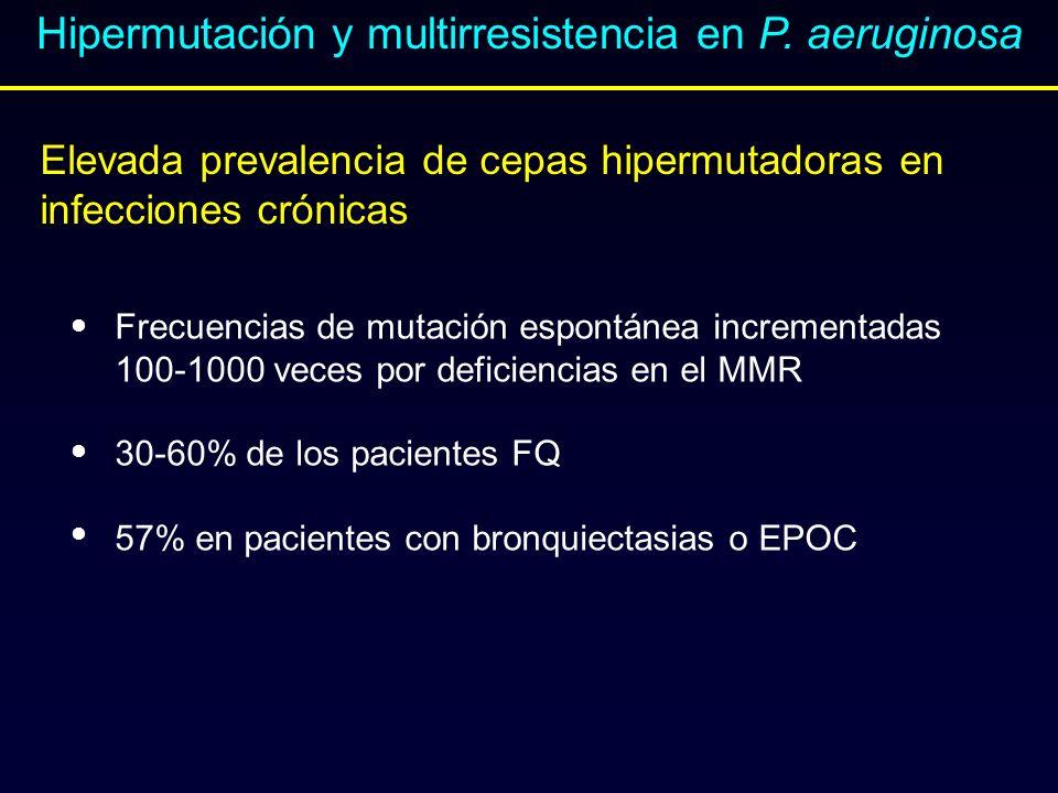 Hipermutación y multirresistencia en P. aeruginosa