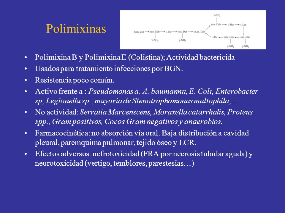 Polimixinas Polimixina B y Polimixina E (Colistina); Actividad bactericida. Usados para tratamiento infecciones por BGN.