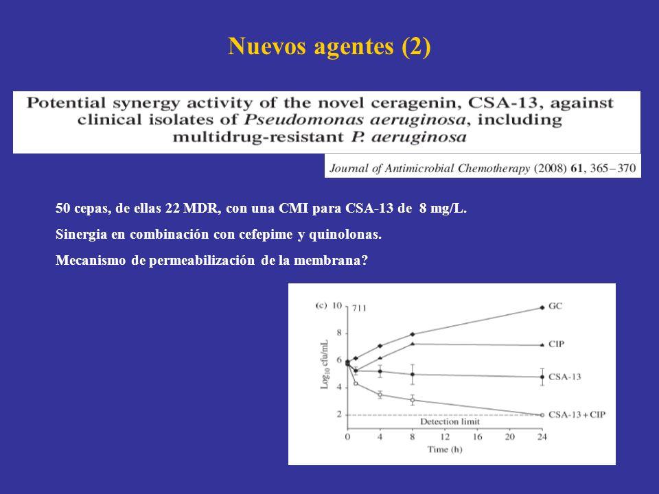 Nuevos agentes (2) 50 cepas, de ellas 22 MDR, con una CMI para CSA-13 de 8 mg/L. Sinergia en combinación con cefepime y quinolonas.