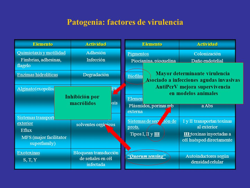 Patogenia: factores de virulencia