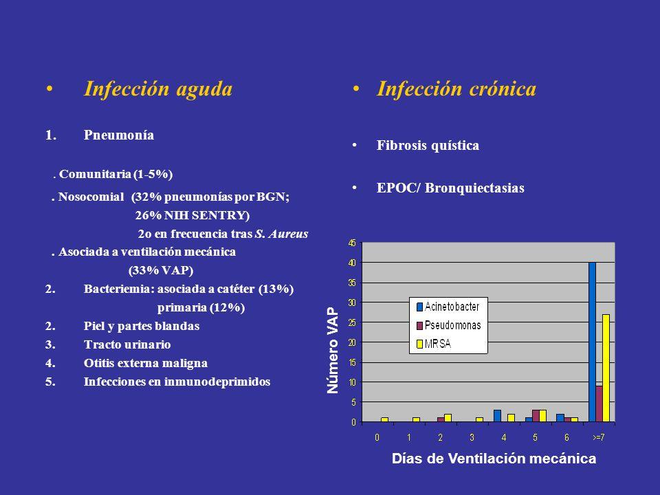 . Comunitaria (1-5%) Infección aguda Infección crónica Pneumonía