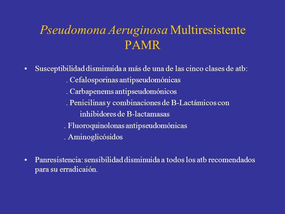 Pseudomona Aeruginosa Multiresistente PAMR