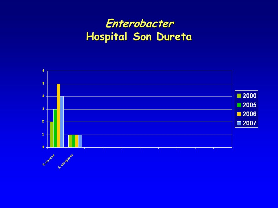 Enterobacter Hospital Son Dureta