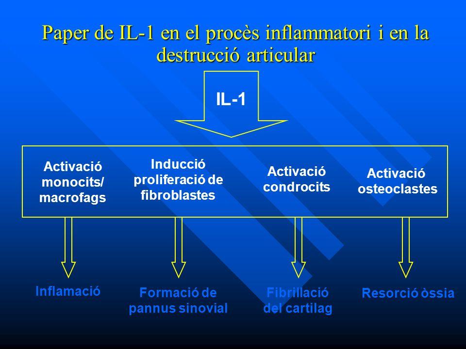 Paper de IL-1 en el procès inflammatori i en la destrucció articular