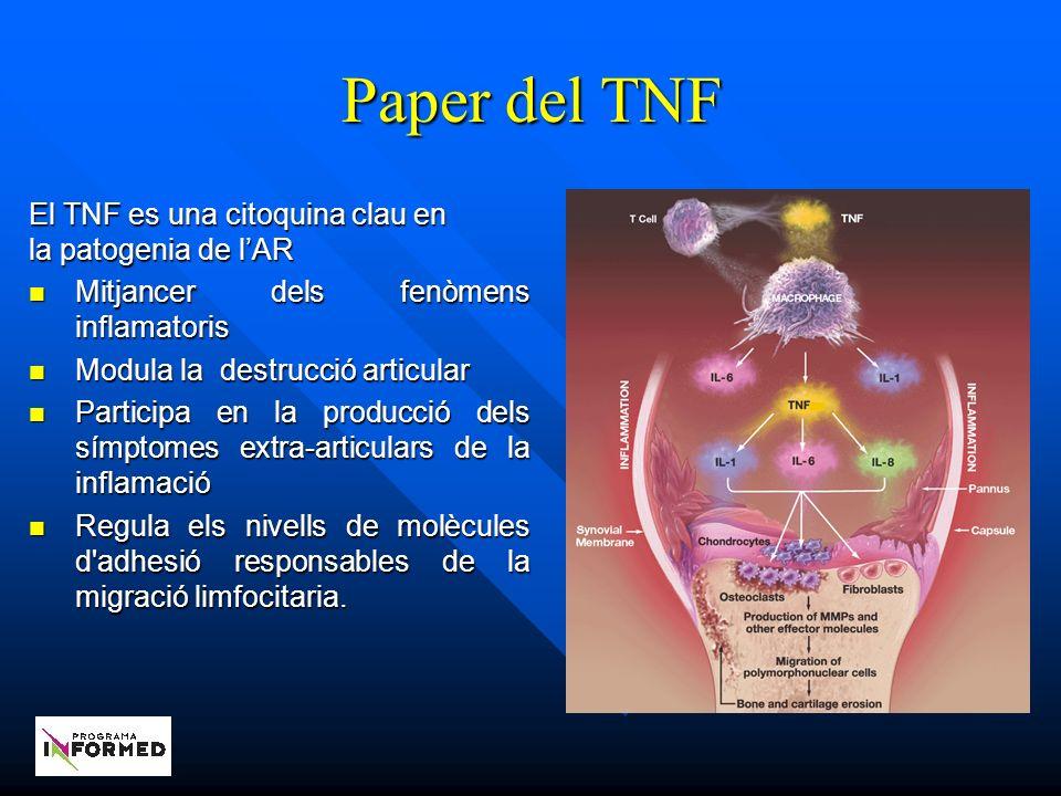 Paper del TNF El TNF es una citoquina clau en la patogenia de l'AR