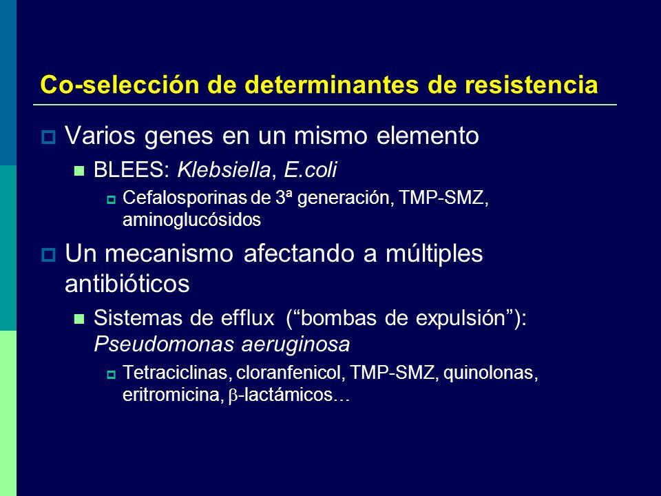 Co-selección de determinantes de resistencia
