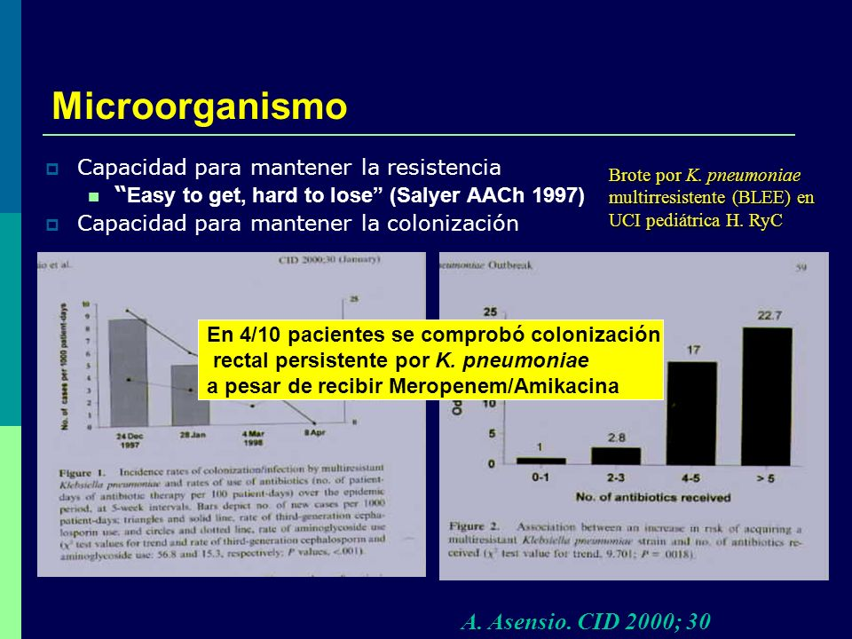 Microorganismo A. Asensio. CID 2000; 30