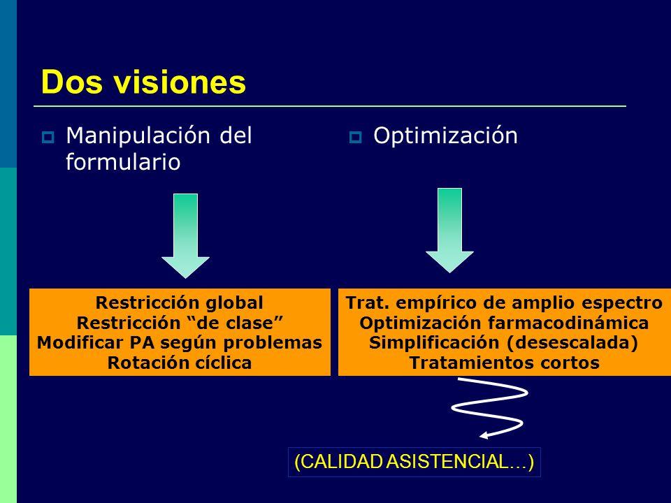 Dos visiones Manipulación del formulario Optimización
