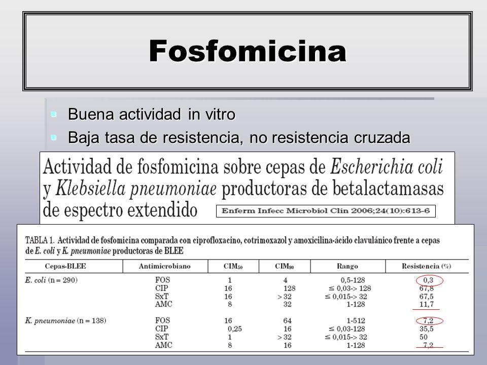 Fosfomicina Buena actividad in vitro