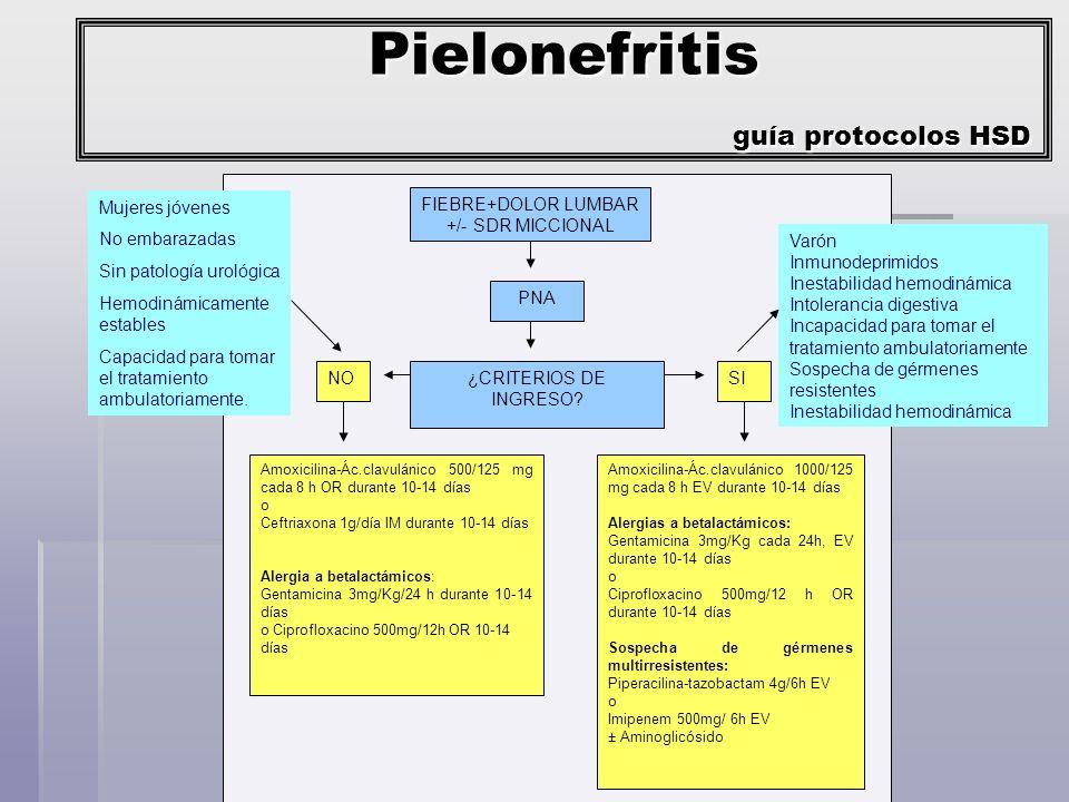 Pielonefritis guía protocolos HSD
