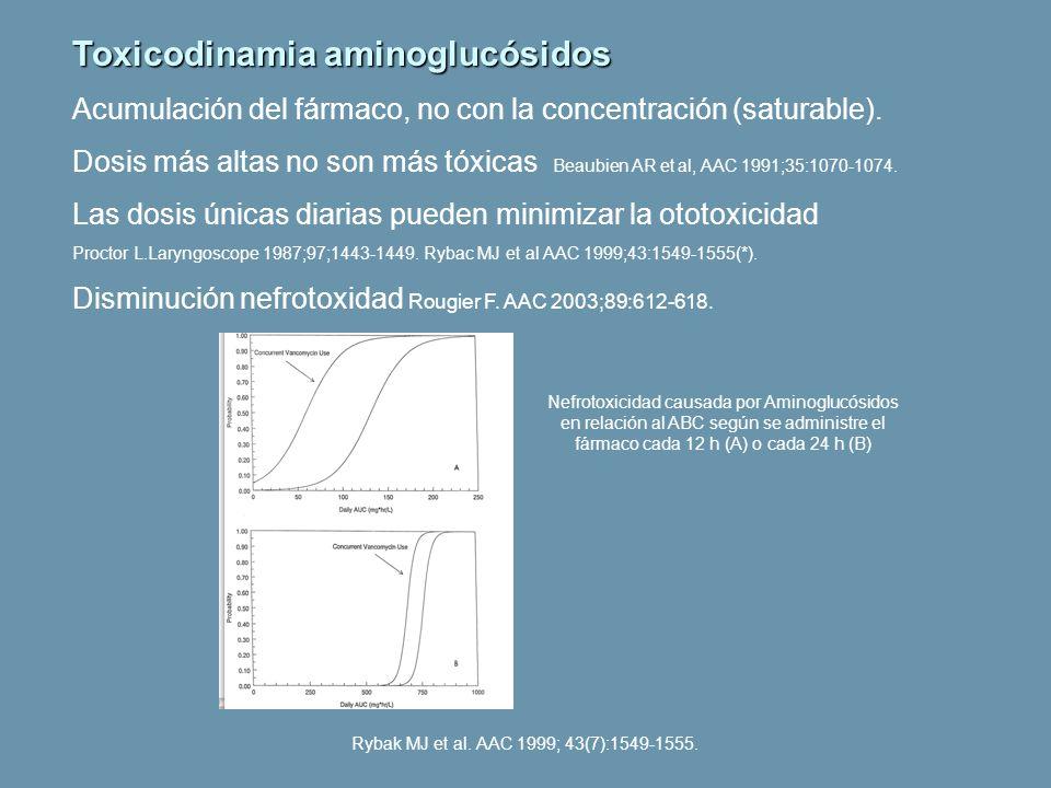 Toxicodinamia aminoglucósidos