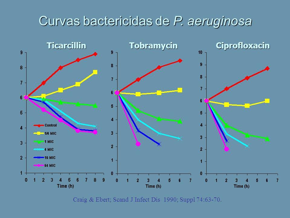 Curvas bactericidas de P. aeruginosa