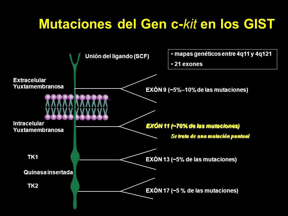 Mutaciones del Gen c-kit en los GIST