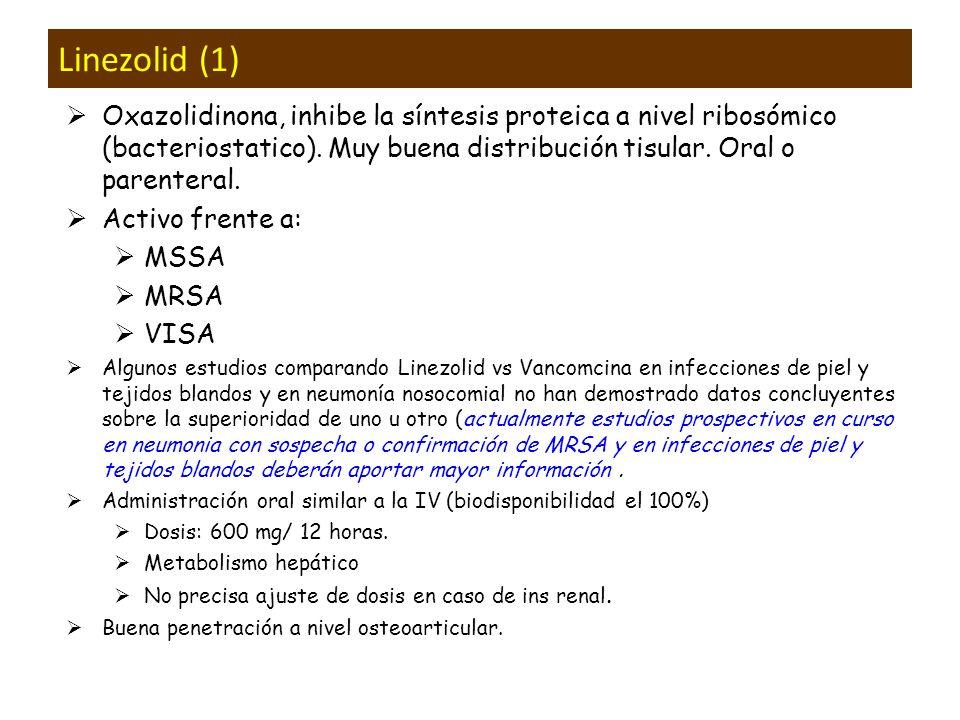 Linezolid (1) Oxazolidinona, inhibe la síntesis proteica a nivel ribosómico (bacteriostatico). Muy buena distribución tisular. Oral o parenteral.