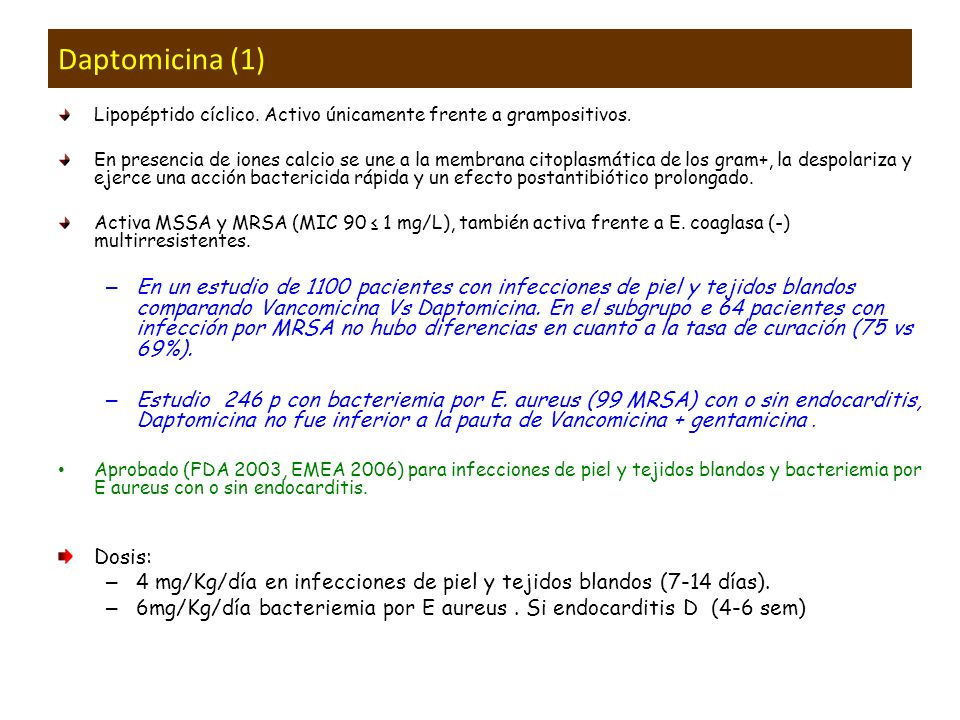 Daptomicina (1)Lipopéptido cíclico. Activo únicamente frente a grampositivos.