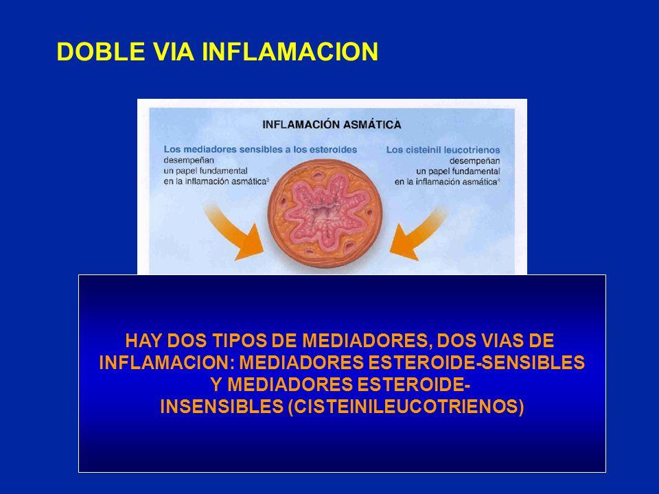 DOBLE VIA INFLAMACION HAY DOS TIPOS DE MEDIADORES, DOS VIAS DE