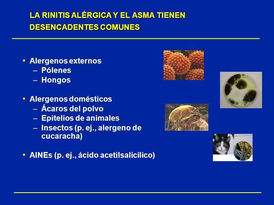 LA RINITIS ALÉRGICA Y EL ASMA TIENEN DESENCADENTES COMUNES