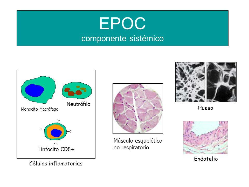 EPOC componente sistémico