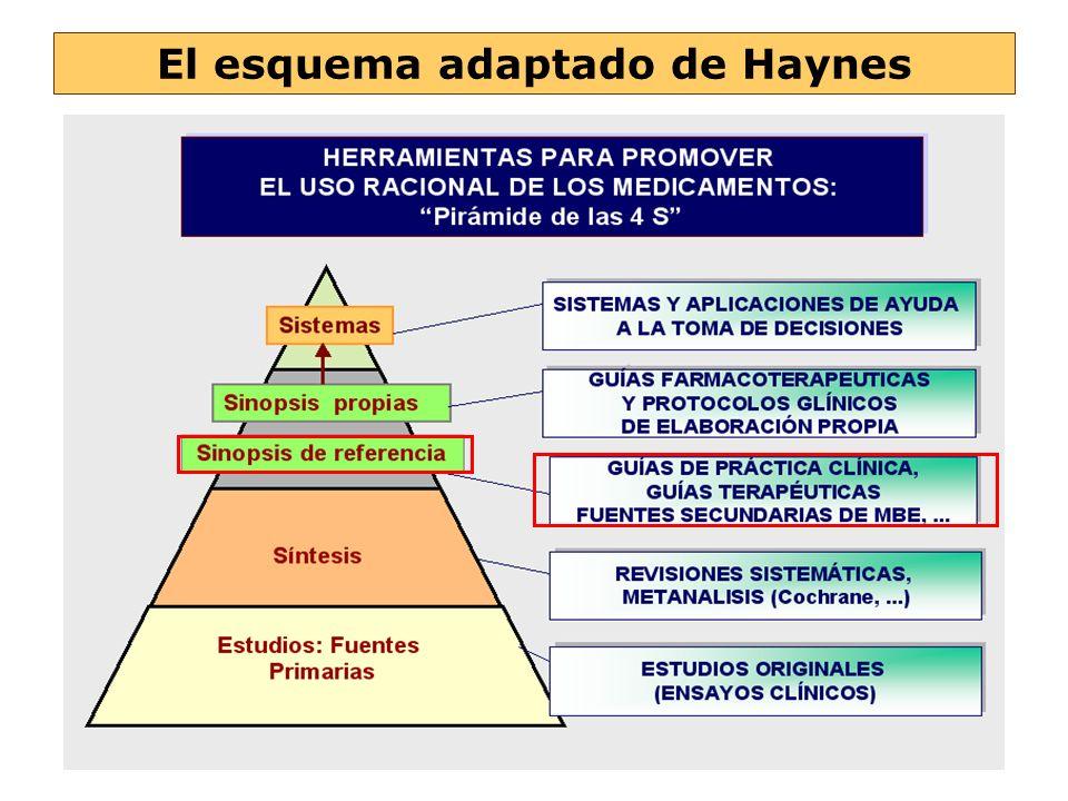 El esquema adaptado de Haynes