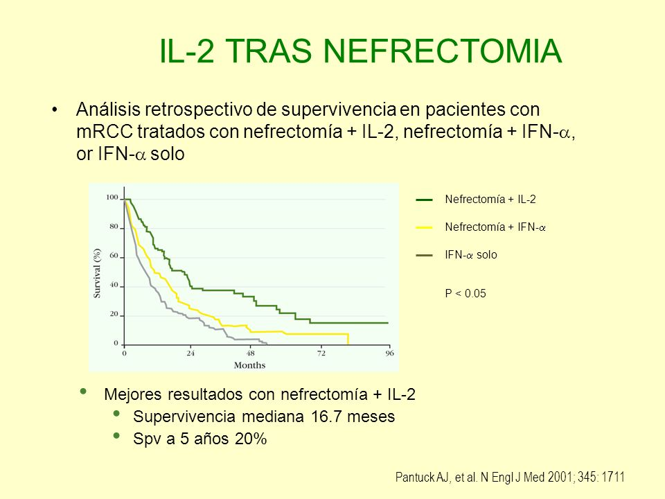 IL-2 based immunotherapy after nephrectomy