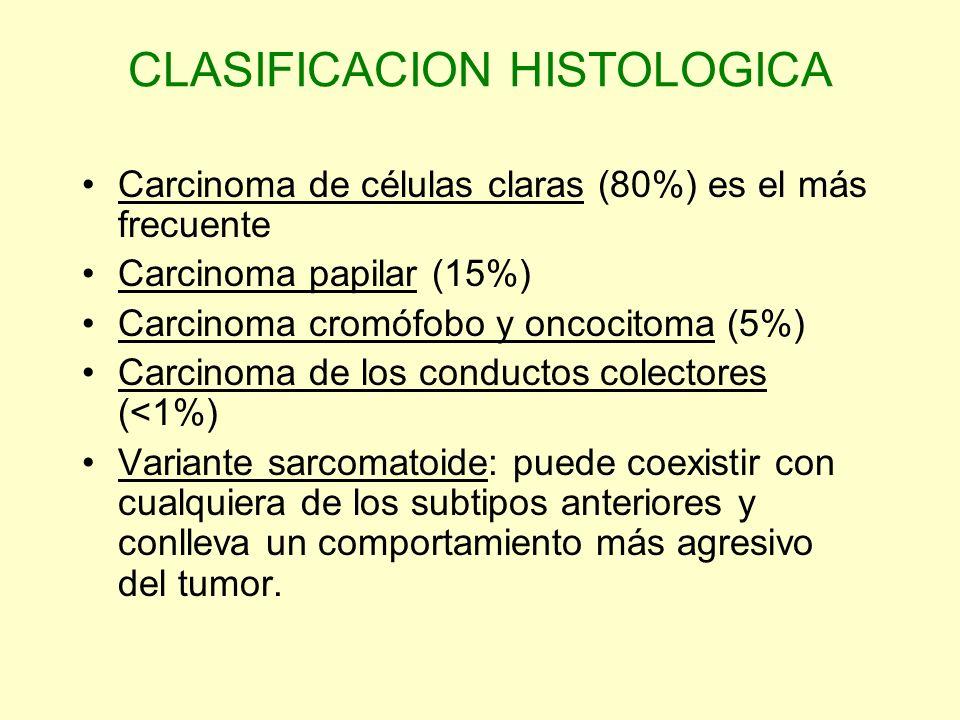 CLASIFICACION HISTOLOGICA