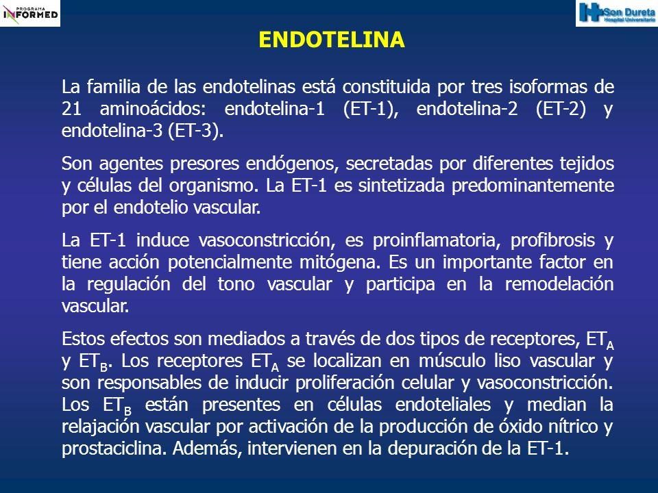 ENDOTELINA