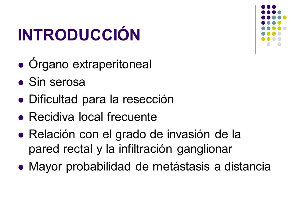 INTRODUCCIÓN Órgano extraperitoneal Sin serosa