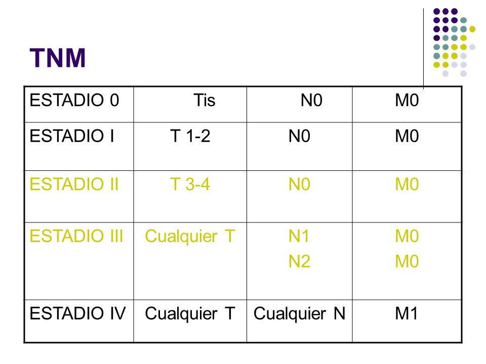 TNM ESTADIO 0 Tis N0 M0 ESTADIO I T 1-2 ESTADIO II T 3-4 ESTADIO III