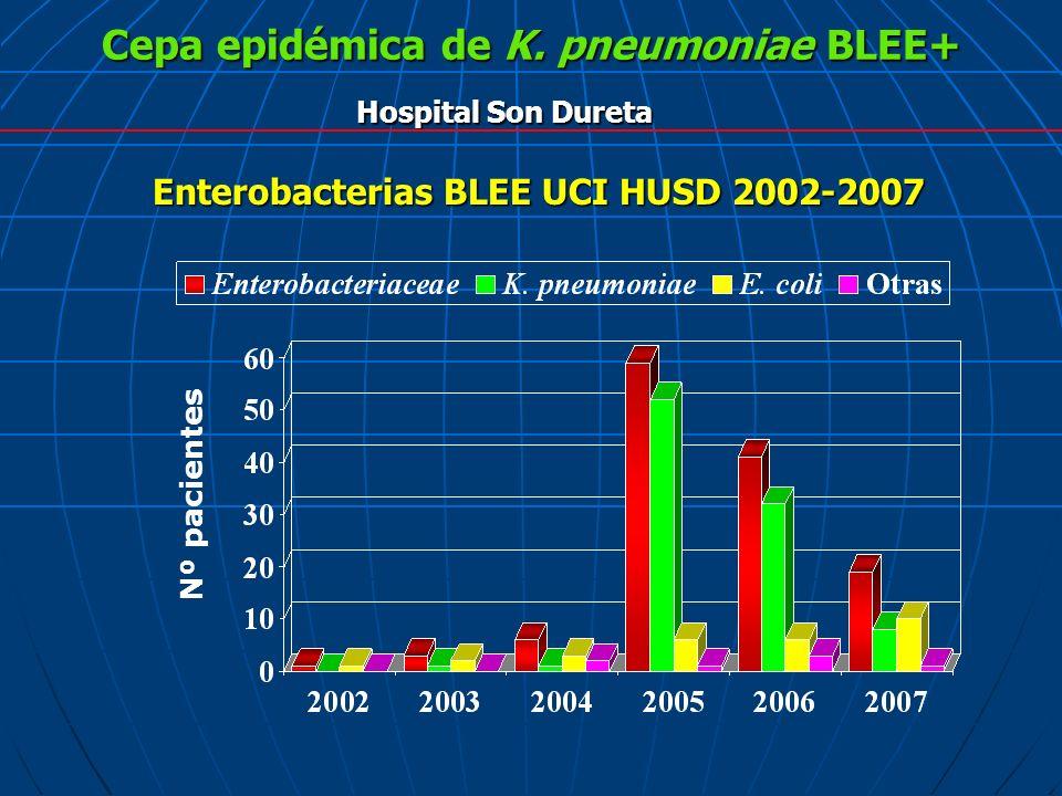 Cepa epidémica de K. pneumoniae BLEE+