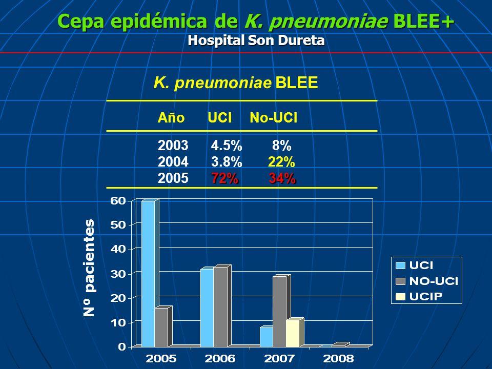 Cepa epidémica de K. pneumoniae BLEE+ Hospital Son Dureta