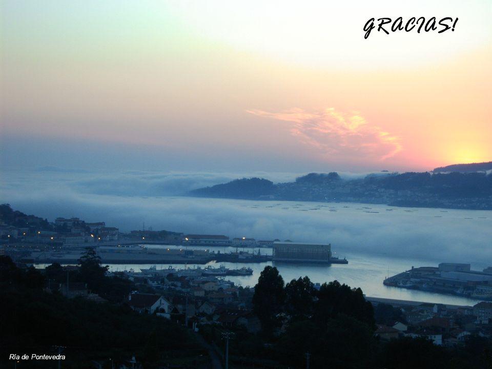 GRACIAS! Ría de Pontevedra