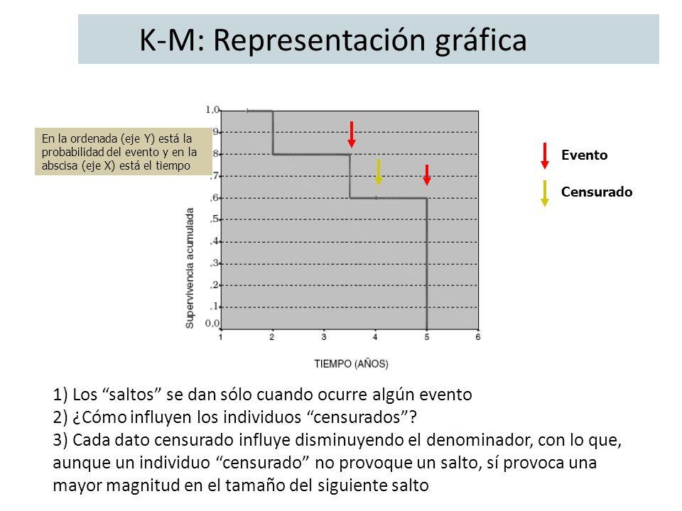 K-M: Representación gráfica
