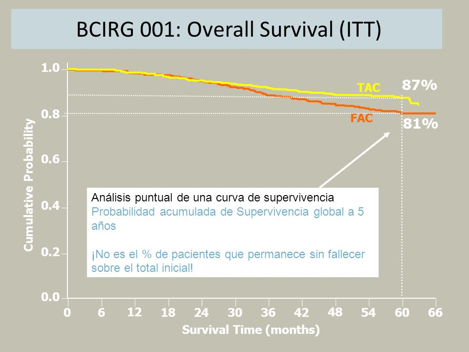 Cumulative Probability Survival Time (months)